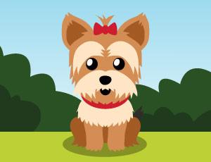 Meu Cãozinho