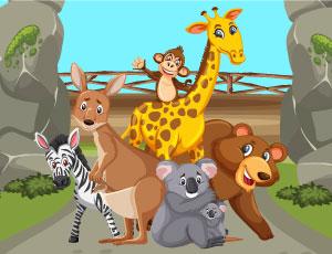 Zoo louco